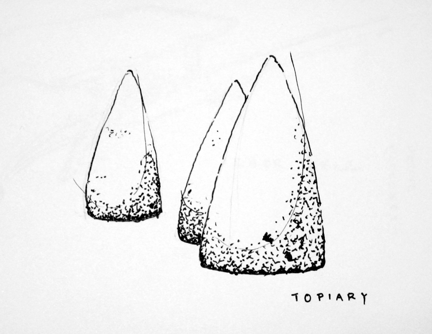 Topiary Sketch